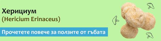 Прочетете актуална и научна информация за гъбата Херициум (Hericium erinaceus)
