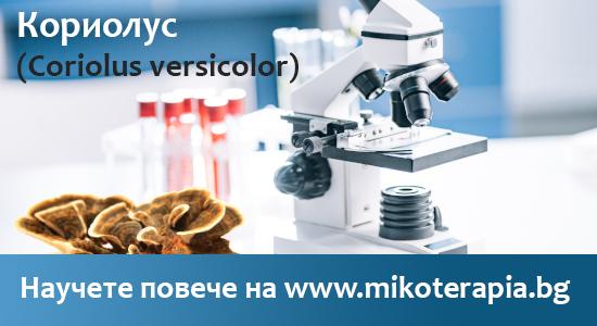 Полизахарид на гъбата Кориолус (Coriolus versicolor) като имунотерапия срещу рак