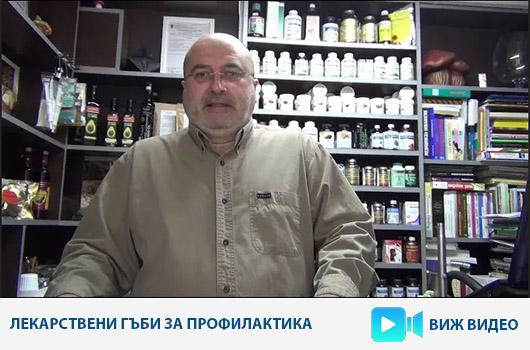 Прием на лекарствени гъби за профилактика