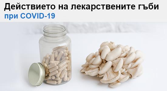 Лекарствени гъби при COVID-19